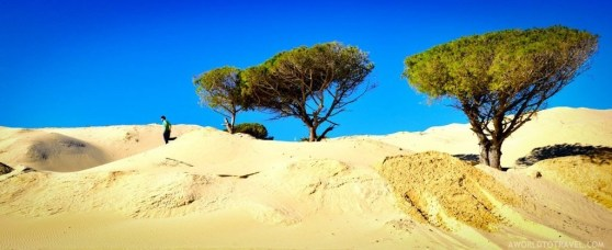 Andalucia Road Trip Itinerary and Tips - A World to Travel-45