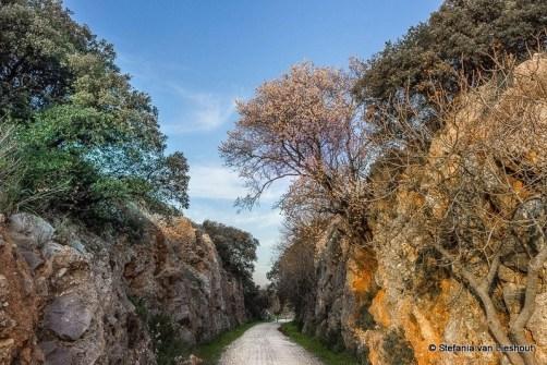 Via Verde Cordoba - Interview with Stefania van Lieshout - A World to Travel