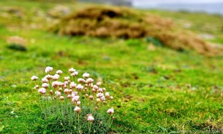 Experience Galicia - What to do in Costa da Morte - A World to Travel-2