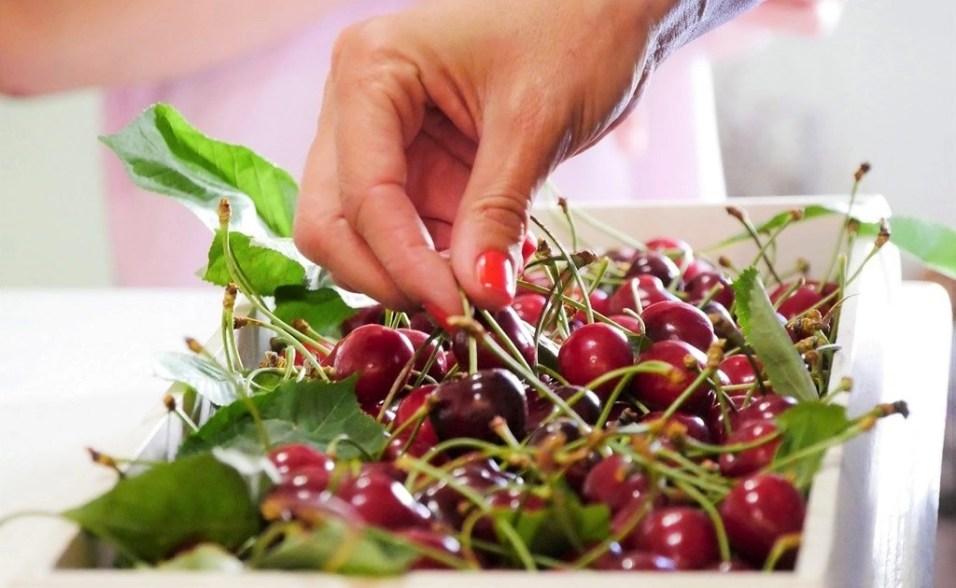 2. Korcula Organic Producers (2)