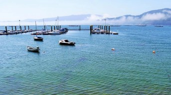 8. Galician delicacies - Galician Getaway - Vigo Experiences Worth Living - A World to Travel (10)