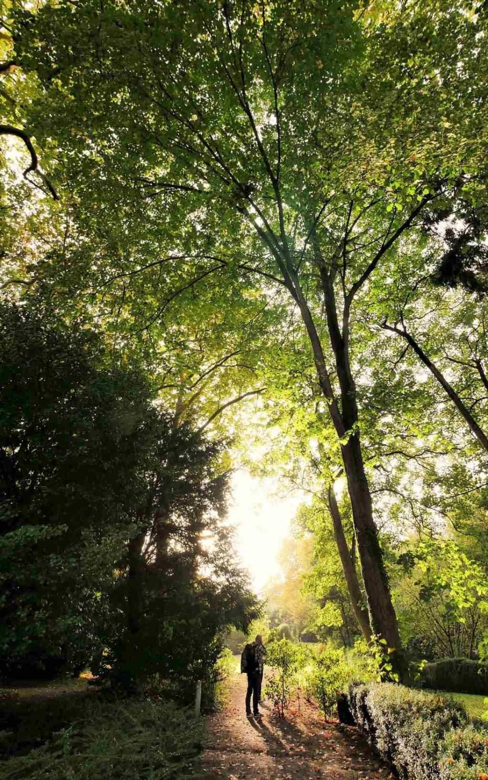 10. Atlantico Botanical Garden - Fun Things To Do In Gijon Rain or Shine - A World to Travel (3)