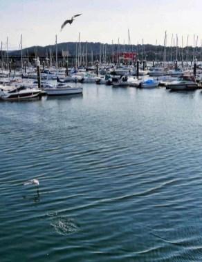Boat ride from Combarro - Pontevedra Estuary - Terras de Pontevedra - A World to Travel (1)