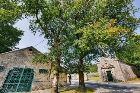 Carballeira de Cuspedriños - San Xurxo de Sacos - Cotobade - Terras de Pontevedra - A World to Travel (2)