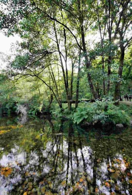 Pasos da Fraga - Rio Verdugo - Ponte Caldelas - Terras de Pontevedra - A World to Travel (3)
