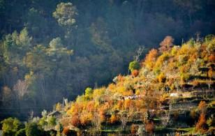 Bestança Valley - Cinfaes - Montanhas Magicas Road Trip - Portugal - A World to Travel (5)