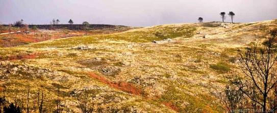 Gravuras de Trebilhadouro - Vale de Cambra - Montanhas Magicas Road Trip - Portugal - A World to Travel