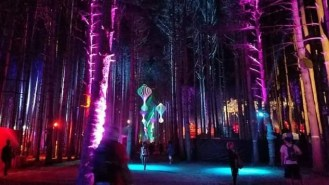 EF_NyanKathryn Ch - Coolest USA Music Festivals - A World to Travel