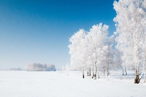 Altai Krai (2) - Things That will make you Visit Siberia in Winter - A World to Travel