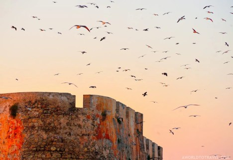 El Jadida - One Week Morocco Itinerary Along The Atlantic Coast - A World to Travel (10)
