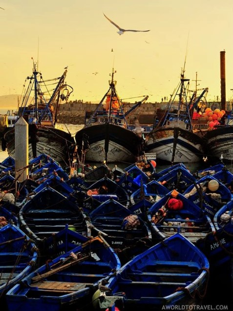 Essaouira - One Week Morocco Itinerary Along The Atlantic Coast - A World to Travel (11)