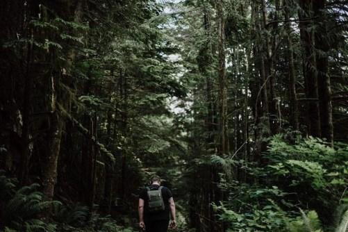 Buntzen lake (2) - Best Day Hikes Around Vancouver - A World to Travel