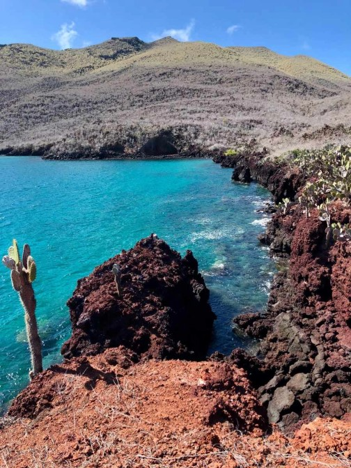 Galapagos family trip - A World to Travel (6)