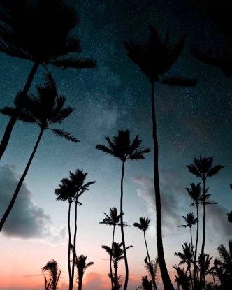 Punta Cana at sunset - Best Beaches In Dominican Republic Road Trip - A World to Travel