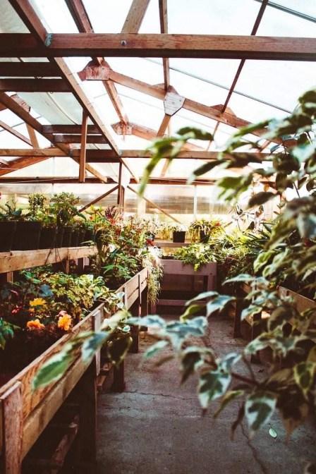 Inspiring Ideas For Lovely Travel-Themed Gardens - A World to Travel (5)