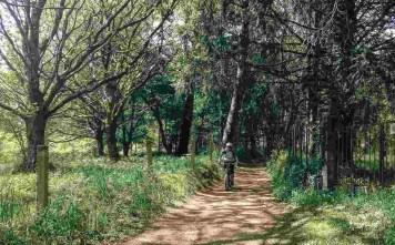 Etapa 5 - Sarria Melide - Camino a Santiago en bici - A World to Travel (5)