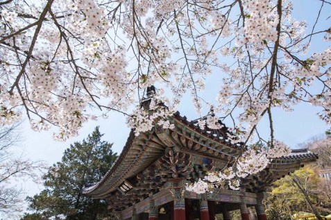 Bulguksa - Places To Visit In South Korea - A World to Travel