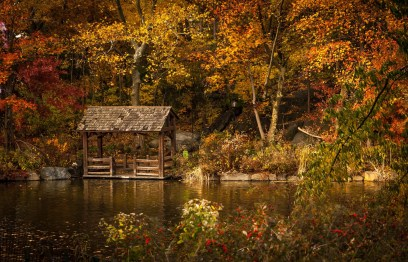 Central Park NYC in Autumn - Best Places For Fall Foliage In The US - A World to Travel