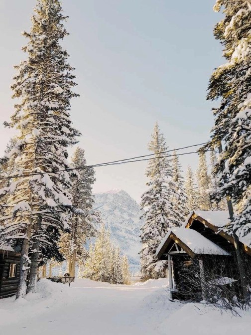 Storm Mountain Lodge and Cabins - Banff National Park - skiing in Canada - A World to Travel