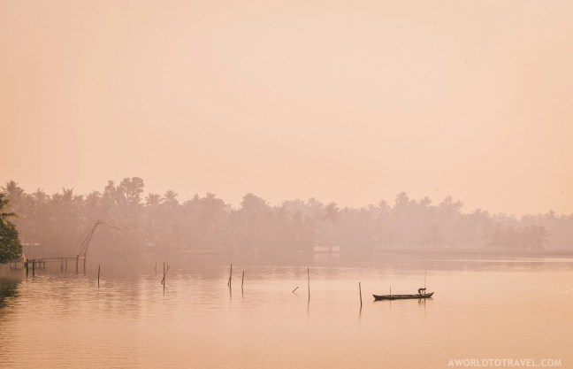 What Makes Kerala Special - Human by Nature - A World to Travel-126