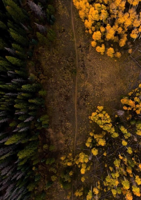 Bike path as seen from above at Silverthorne forest USA
