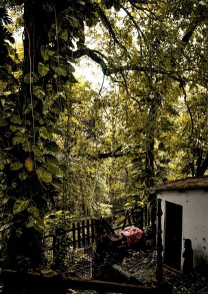 A guide to Olinda, Brazil - Recife's Colonial Neighbor (4)