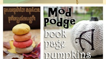 25 Fall Decor and Craft Ideas