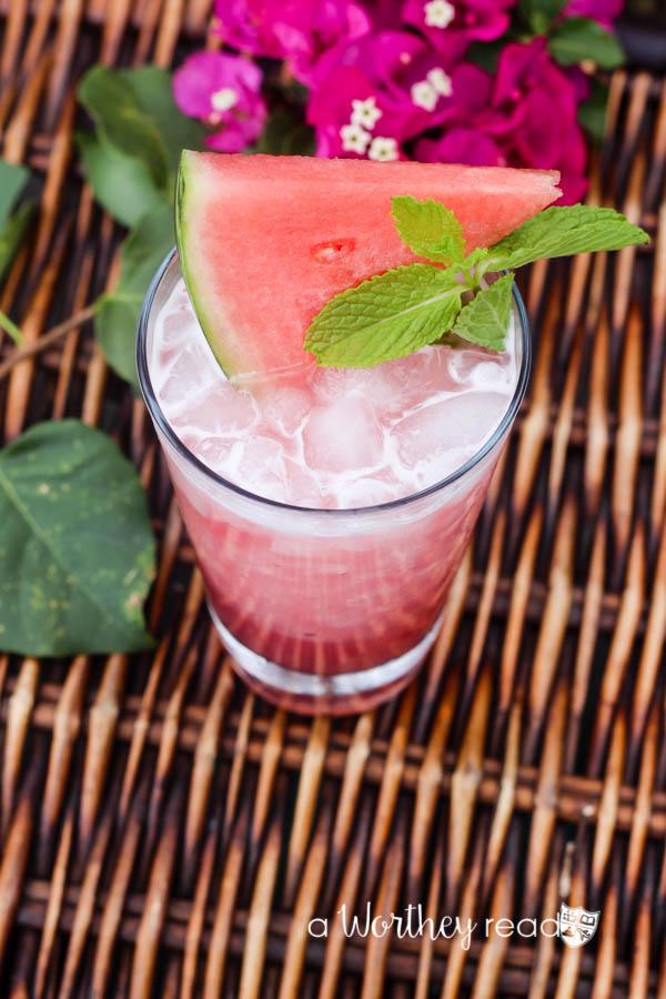 Guava Watermelon Margarita-3
