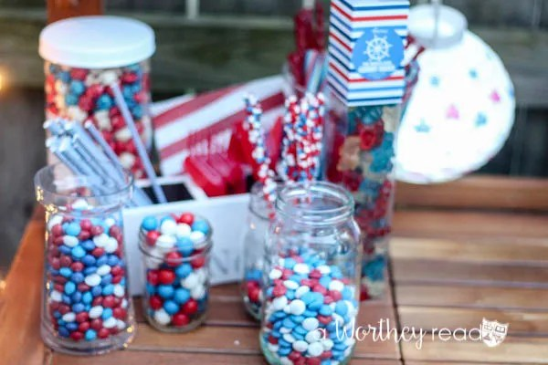 Red, White & Blue Outdoor Party Theme-5