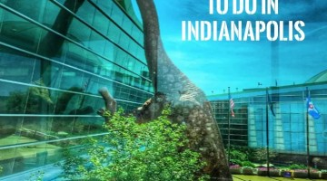 Taking a vacation to Indy this summer? There is a ton of things to do for family in Indianapolis. Check out our list of 20 Free Things to Do in Indianapolis Traveling in the midwest can be the best vacation!