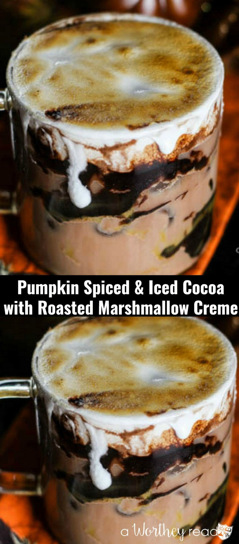 Curl up this fall with this delicious Pumpkin flavored hot chocolate. Pumpkin Spiced & Iced Cocoa with Roasted Marshmallow Creme