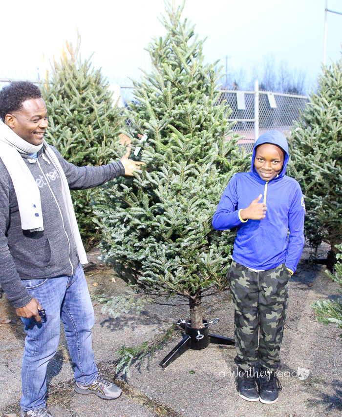 Picking out a Christmas Tree Horrocks