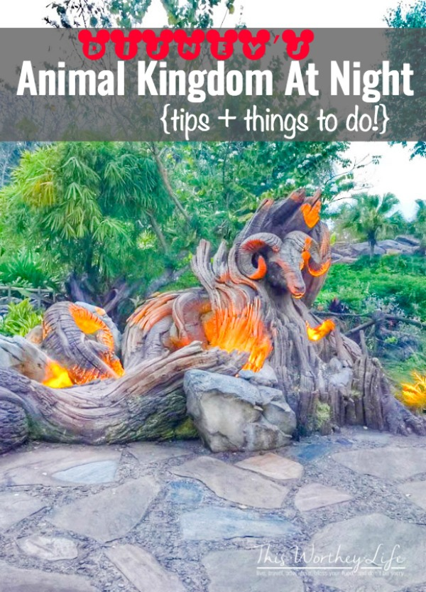 Animal Kingdom is full of new attractions and excitement, all at night. Check out the top things to do at Disney's Animal Kingdom at night!