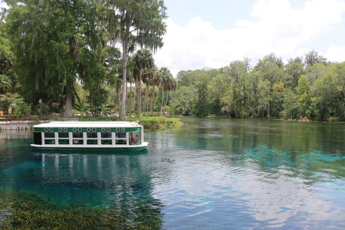 Adventures You Can Have In Ocala/Marion County Florida