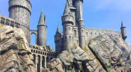 Plan a fun and memorable trip to Universal Studio's Wizarding World of Harry Potter with our tips and recommendations. We've been to Universal's popular Harry Potter theme park several times in recent years, and learn something new each time we go