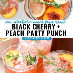 Party Punch recipe ideas