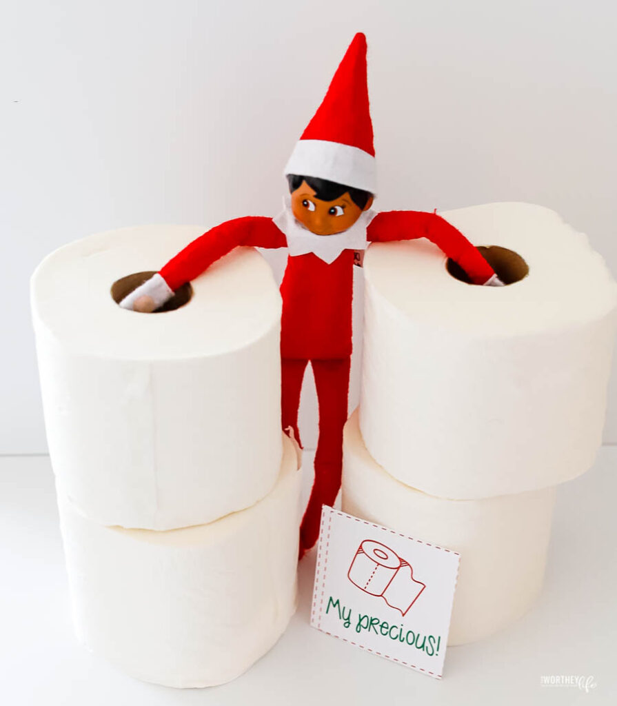 Elfie with rolls of tissue