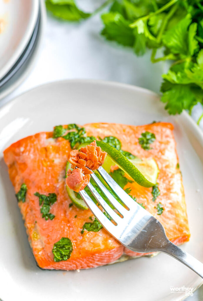frozen salmon cooked in air fryer