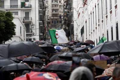 Demonstrators take cover from rain under umbrellas during a protest in Algiers