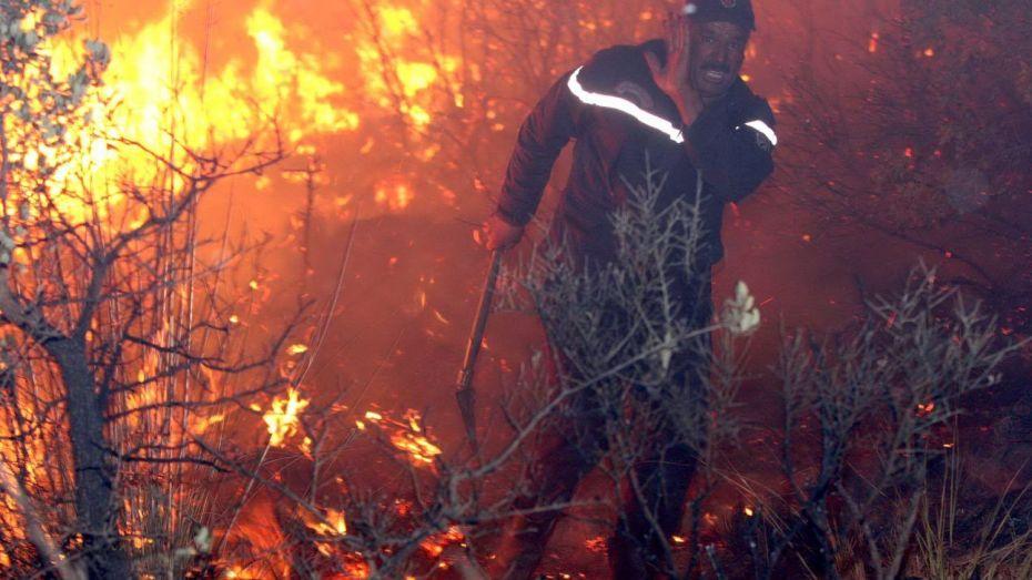 تعرّف على ما حجزته الشرطة في إطار التحقيق حول الحرائق