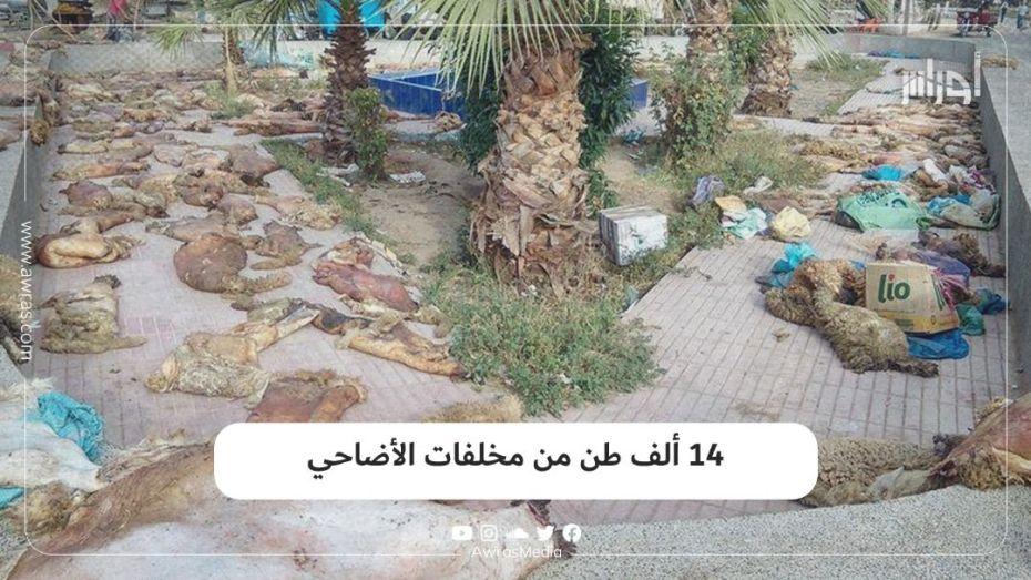 14 ألف طن من مخلفات الأضاحي
