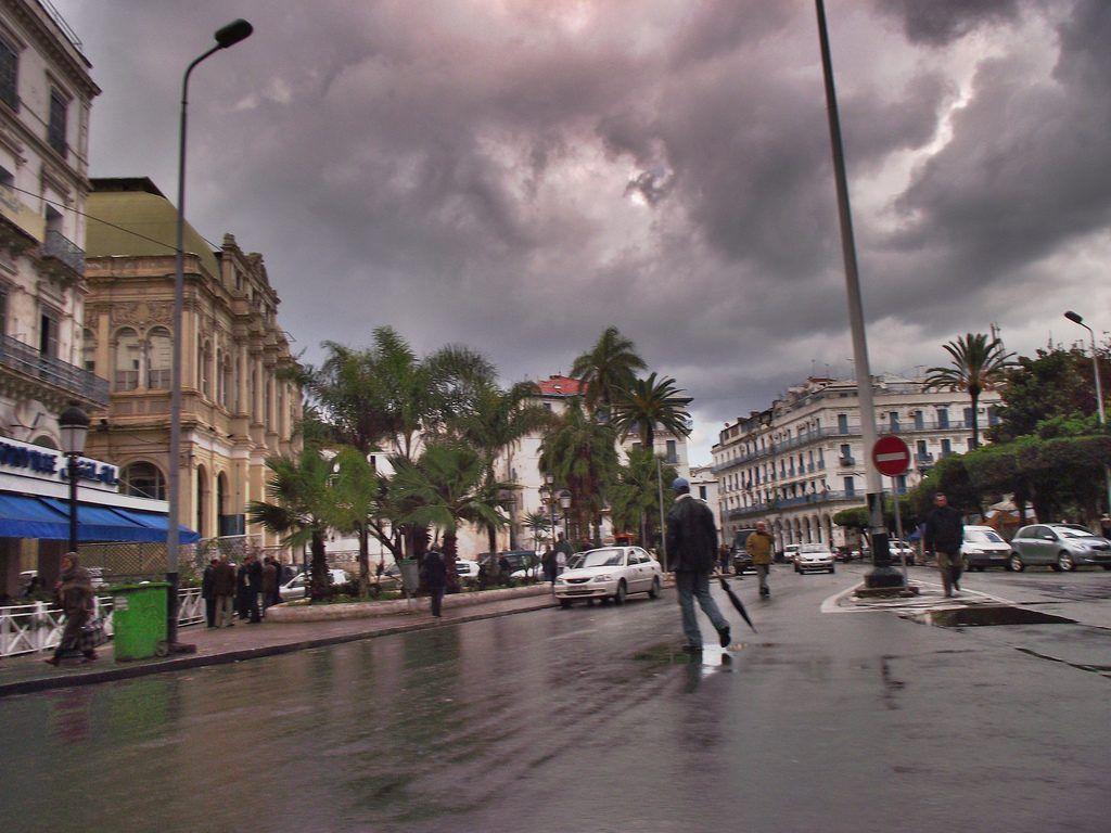 أمطار رعدية شرق الوطن ورياح وزوابع بالولايات الجنوبية