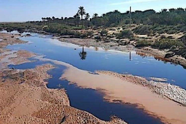 سوناطراك تكشف جديد تسرب النفط بالوادي