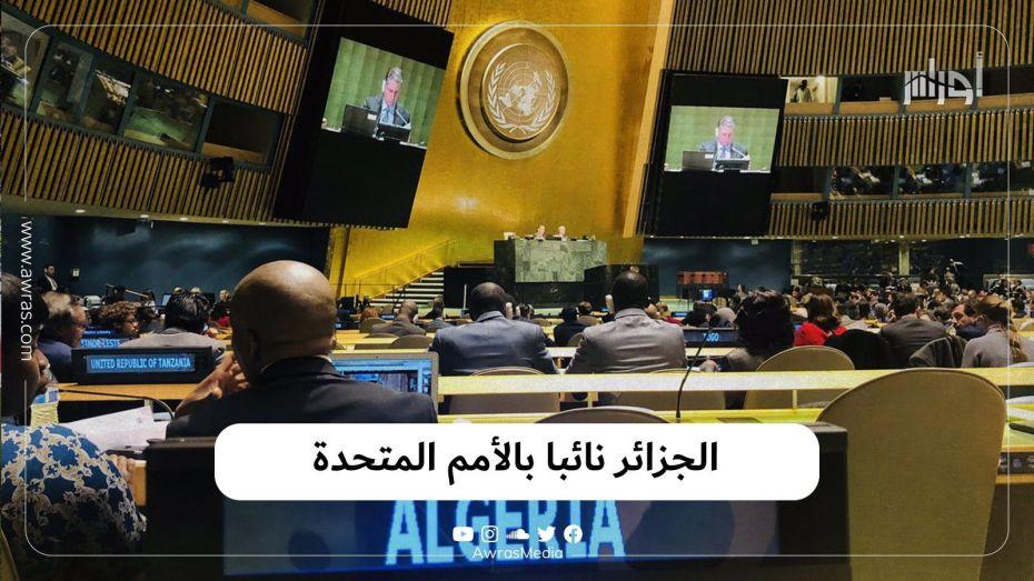 الجزائر نائبا بالأمم المتحدة