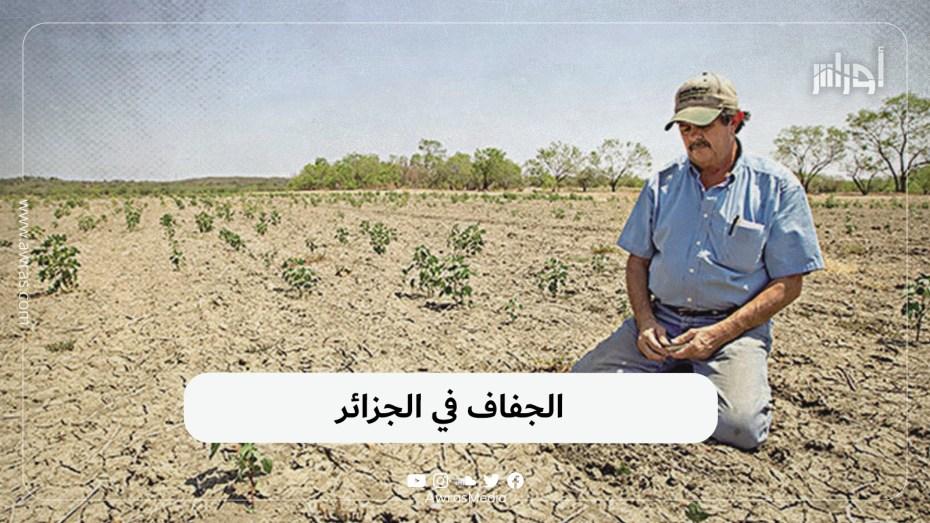 الجفاف في الجزائر
