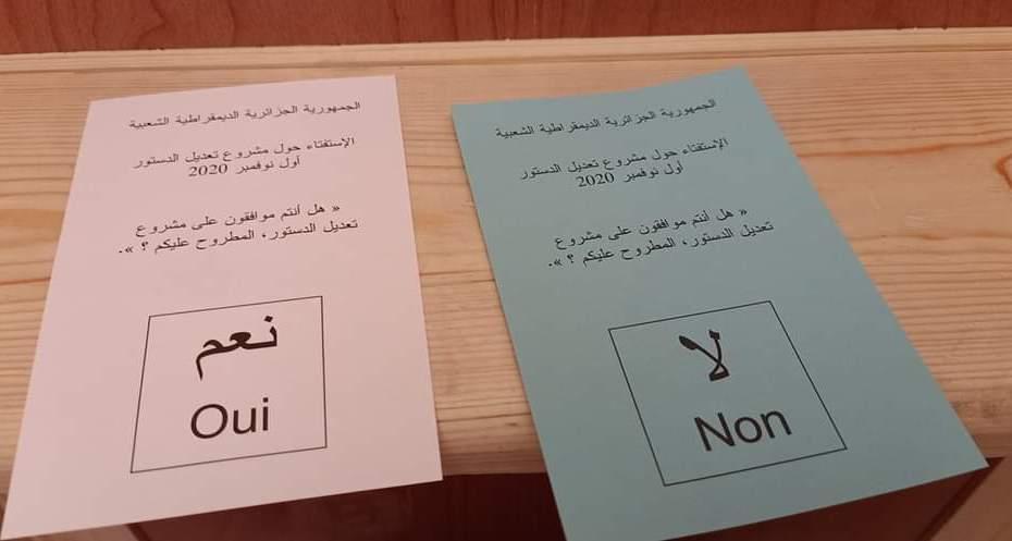 سلطة الانتخابات: أكثر من مليون وربع مصوت على مسودة الدستور