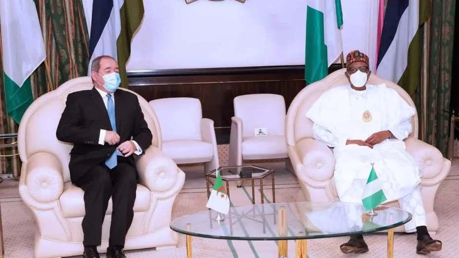 وزير الخارجية يحظى باستقبال من رئيس نيجيريا