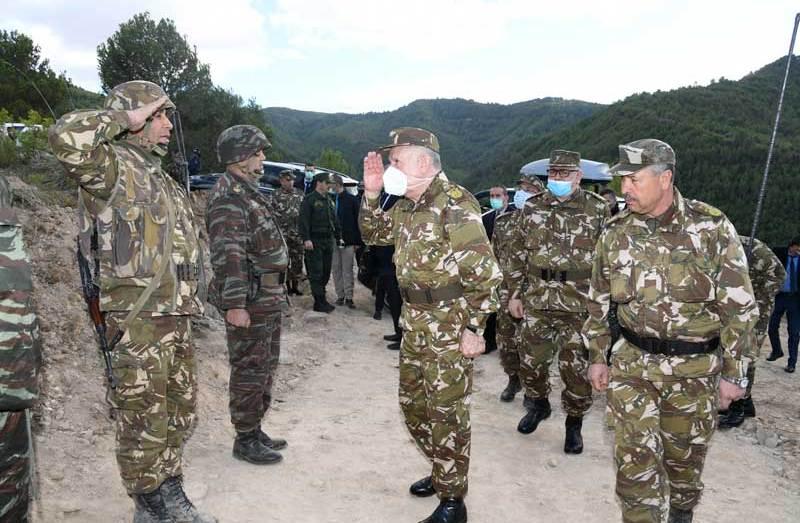 السعيد شنقريحة يزور الوحدات المشاركة في إطفاء الحرائق بتيزي وزو وبجاية