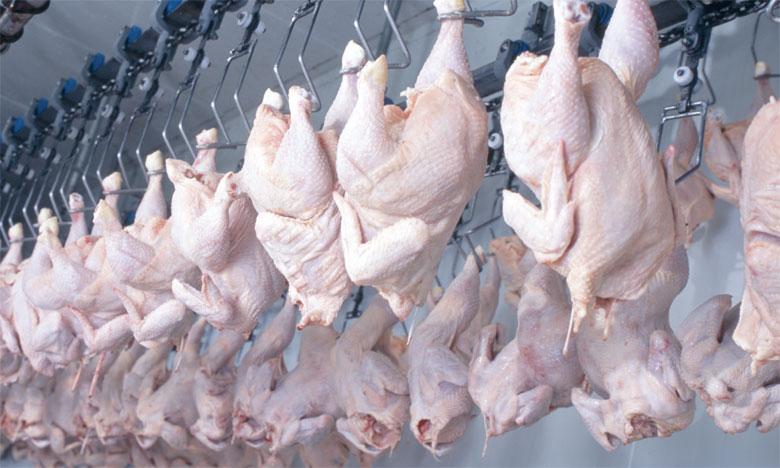 وزير الفلاحة يكشف أسباب ارتفاع بعض المواد الاستهلاكية خاصة اللحوم