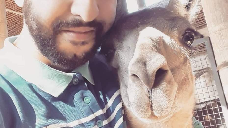 عقب استغلال مساحة العنقاوي التي يربي فيها الحيوانات.. قصة ماوغلي الجزائر تنتهي
